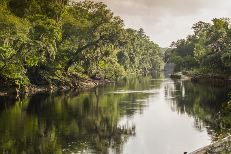 United Country - Lands of North Florida Realty. Suwannee River