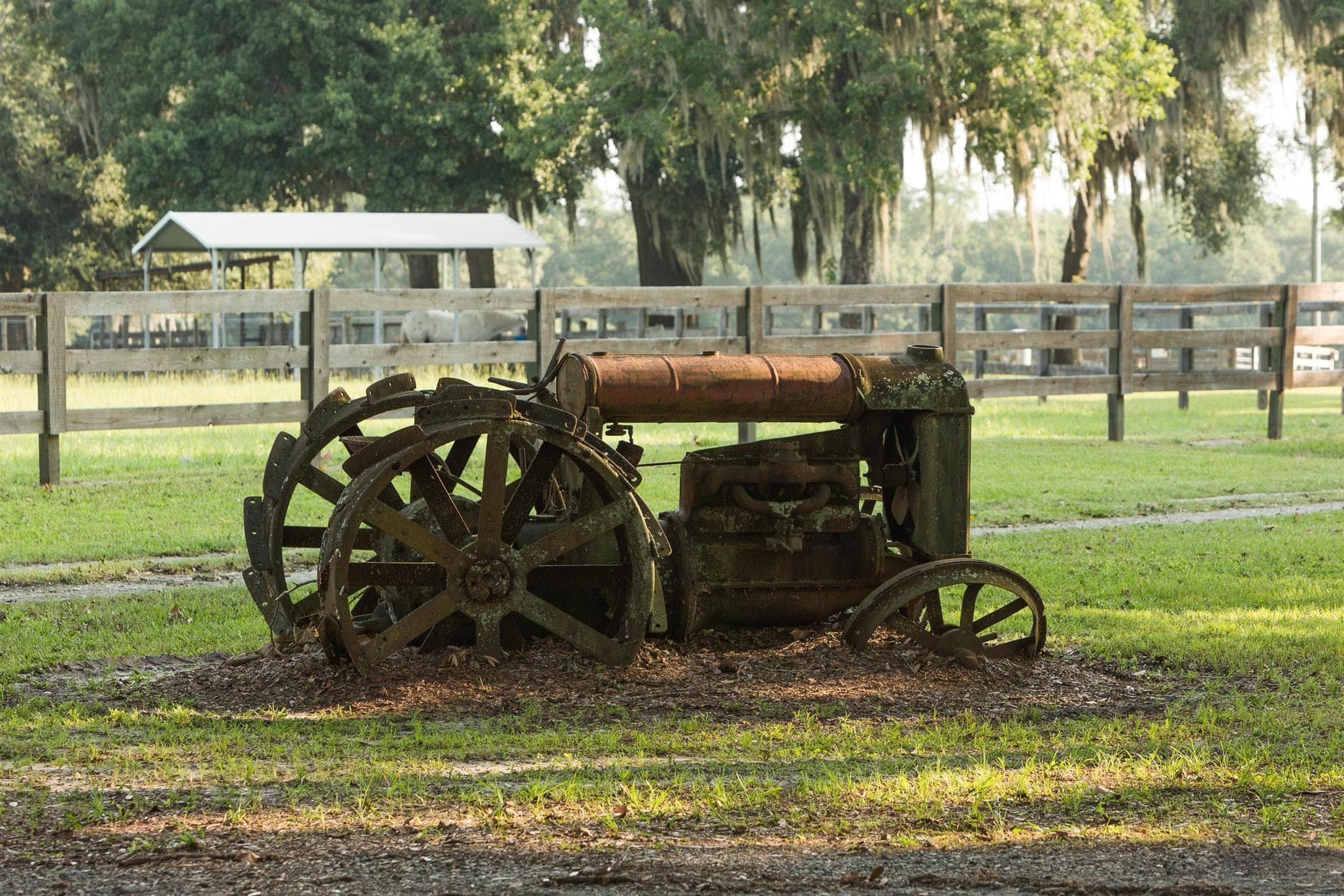 Old steel wheeled tractor on property for sale in suwannee county fl