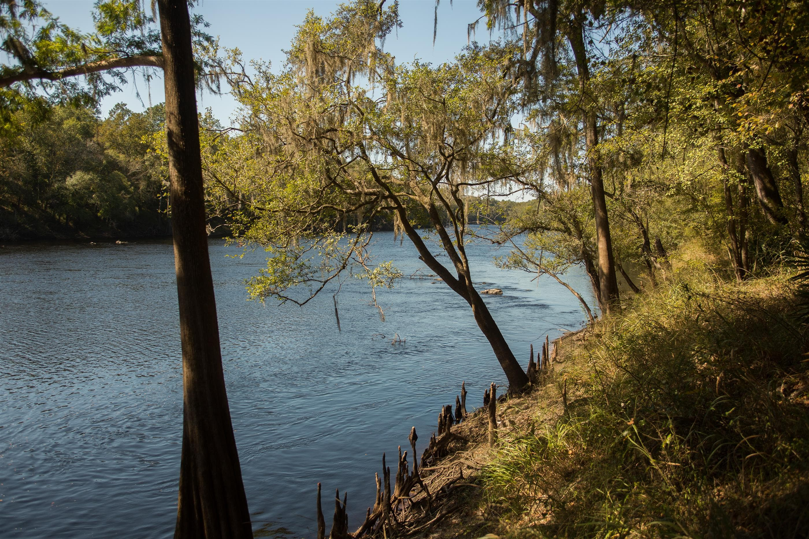 Suwannee River property and shoals during fall