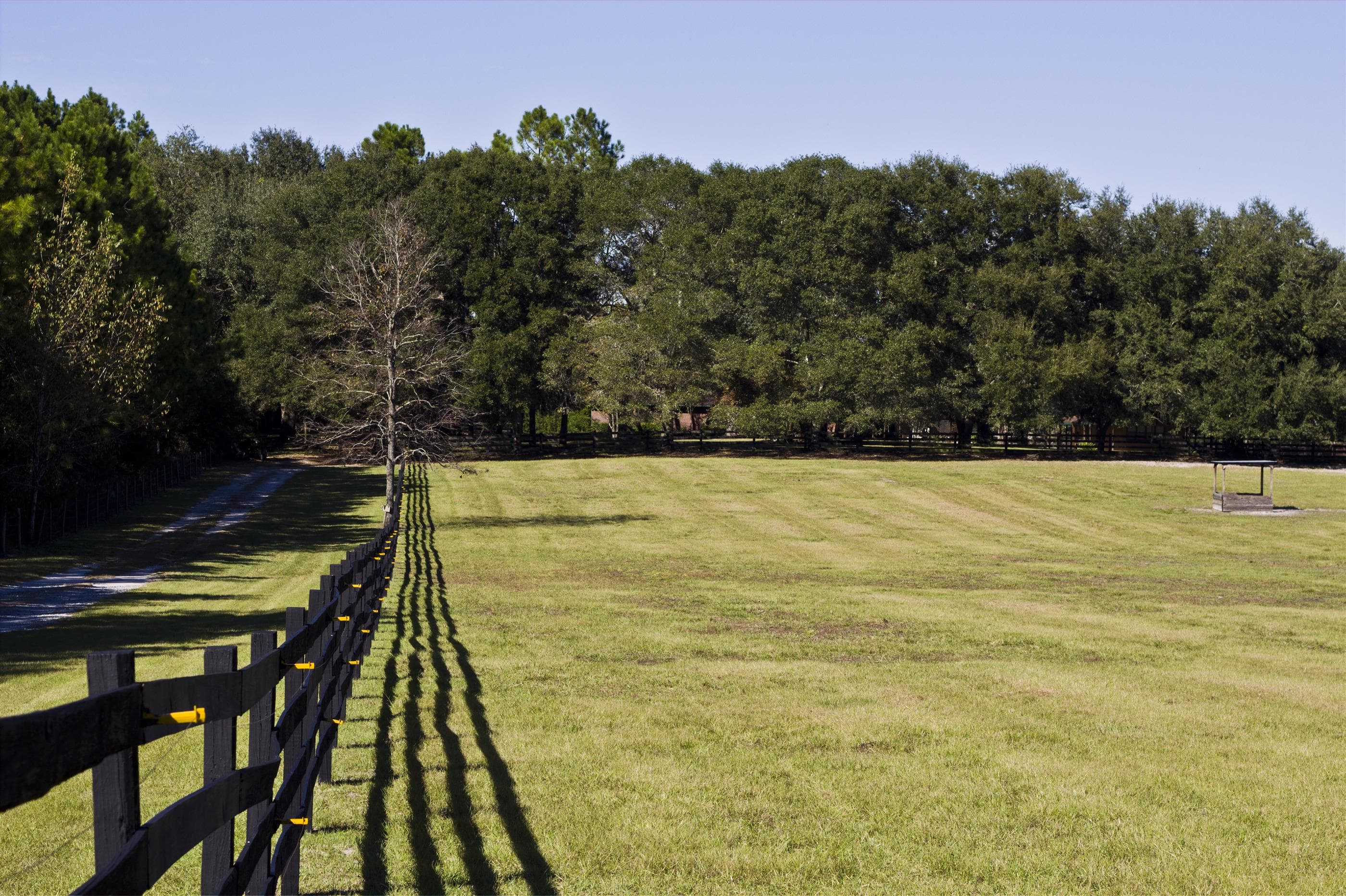 Horse property in North Florida Forsale with board fencing