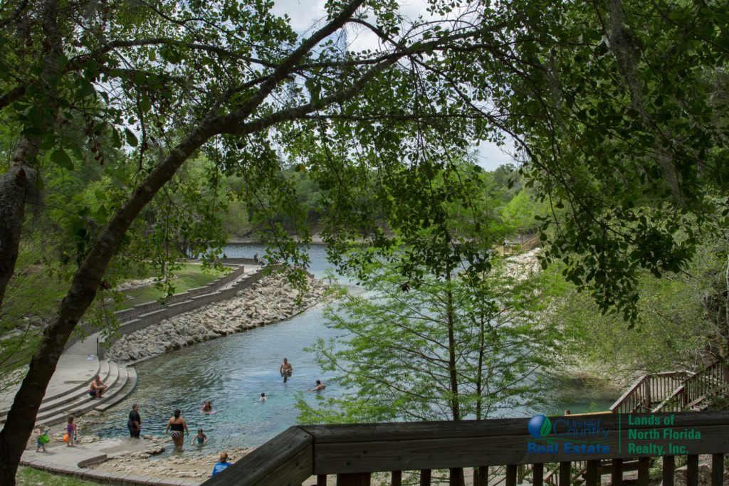 One more overview from a observation deck at Little River Springs overlooking the length of it.