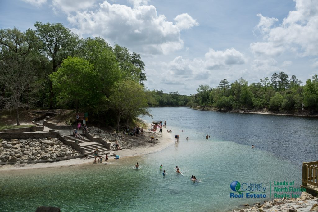 Another view of the convergence with the Suwannee River and a look down stream. Across the spring run is a concreted stair way and small beach area