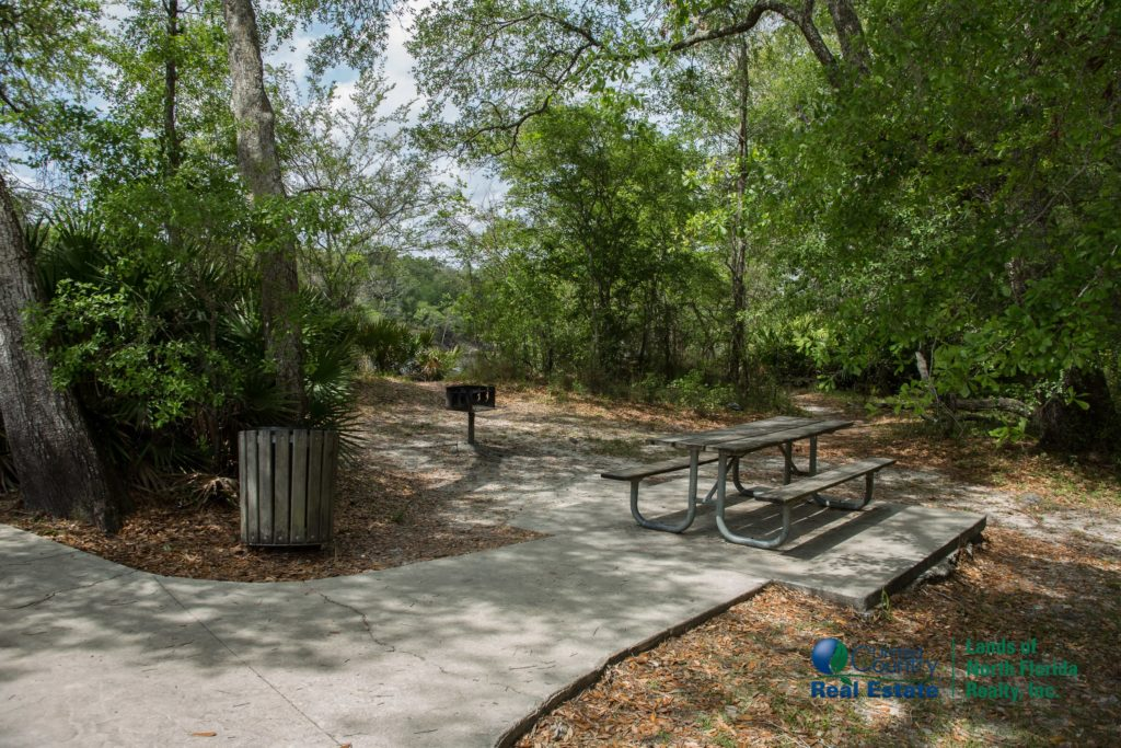 Little River Springs one of many picnic areas with table, trash receptacle and charcoal bbq