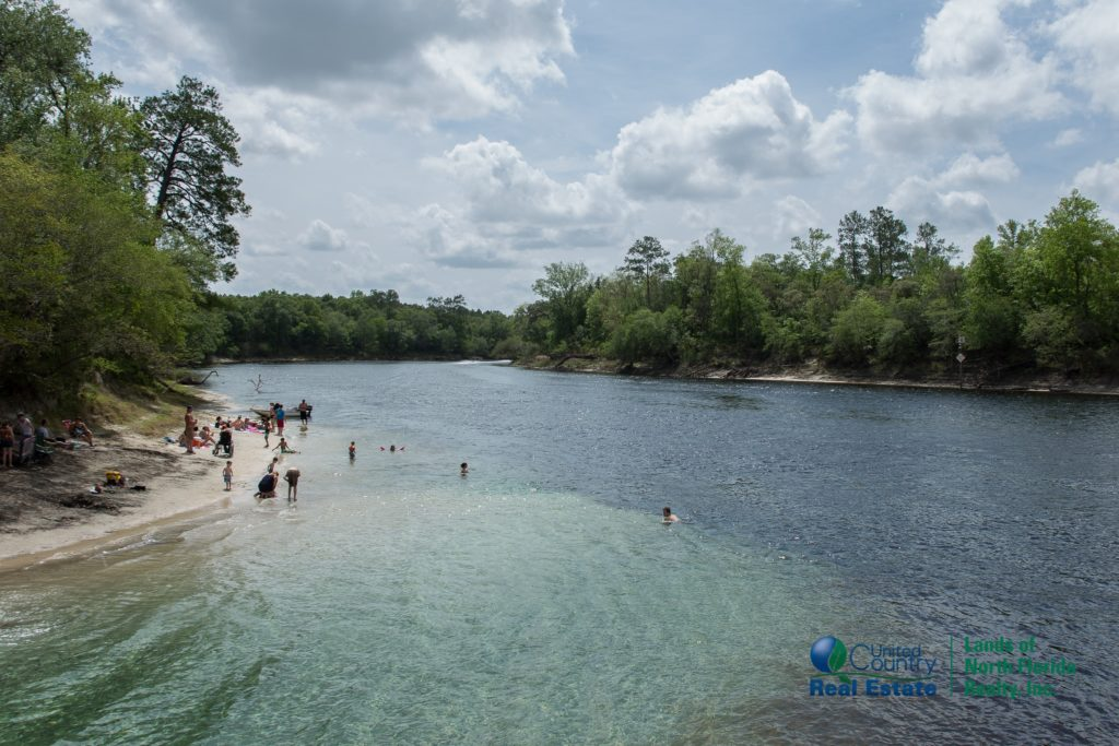 Convergence of Little River Spring's run into the Suwannee River where the virtual wall of clear blue water meets the tea colored Suwannee River