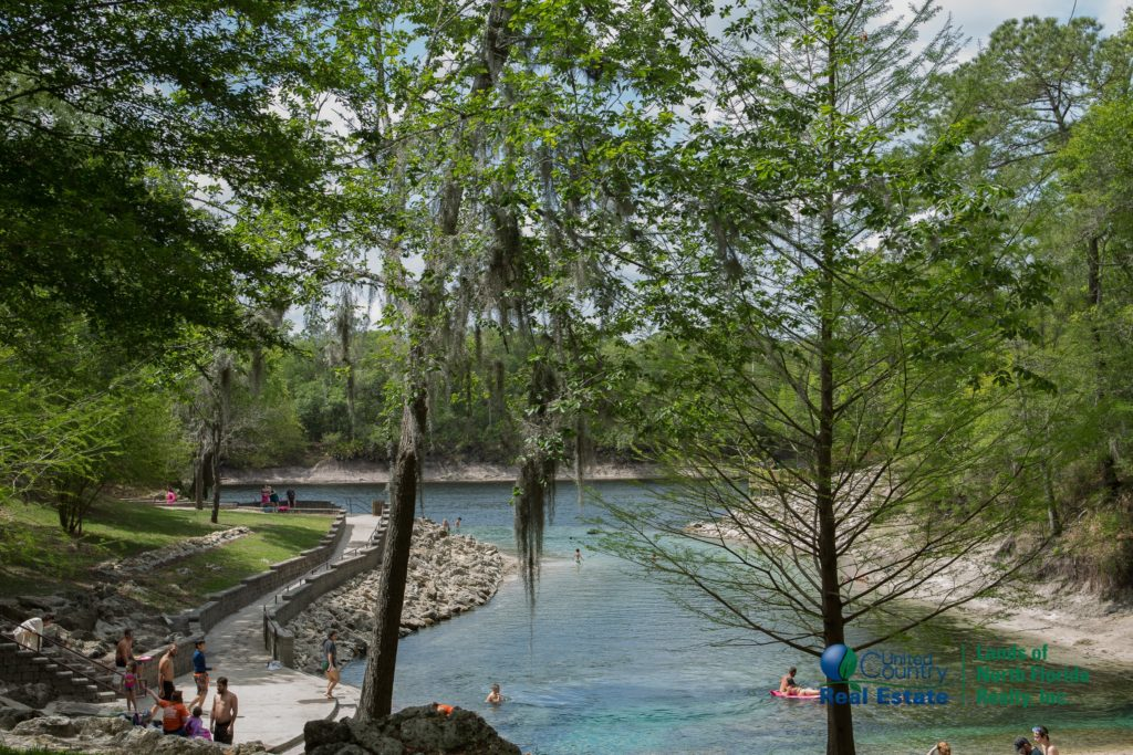 Little River Springs looking down the length of it out towards the Suwannee River.