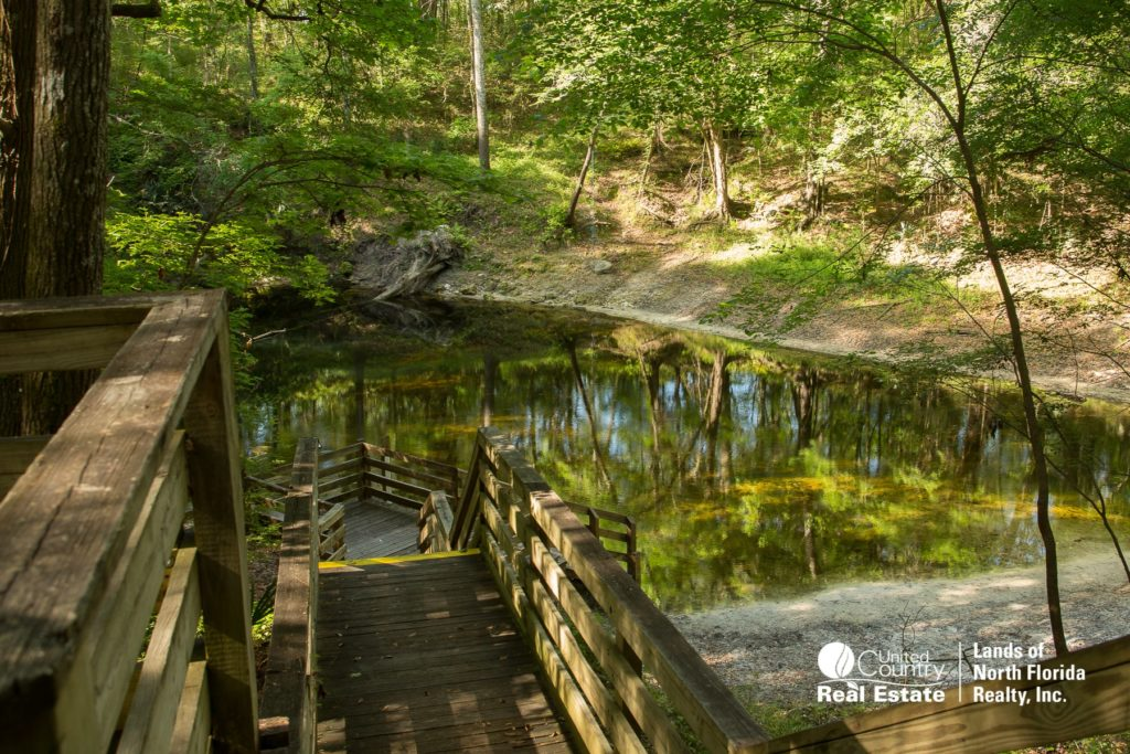 Board walk down into Falmouth Springs vent