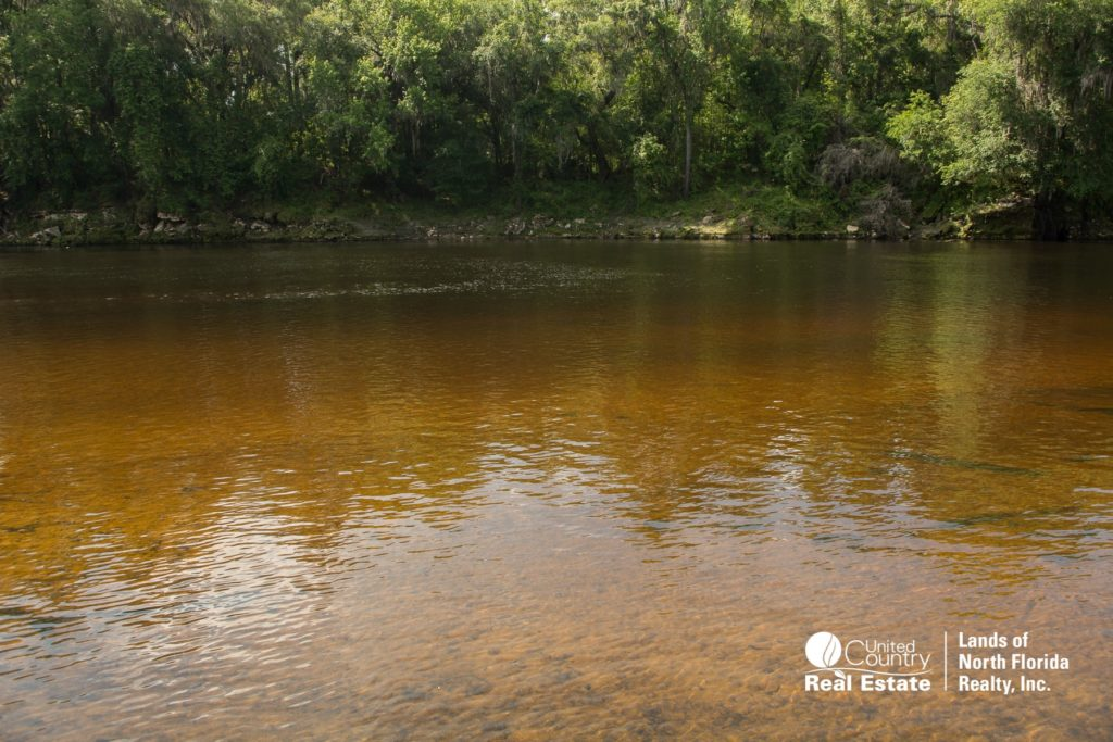 Suwannee River shallow sand bar, near Ellaville Park area
