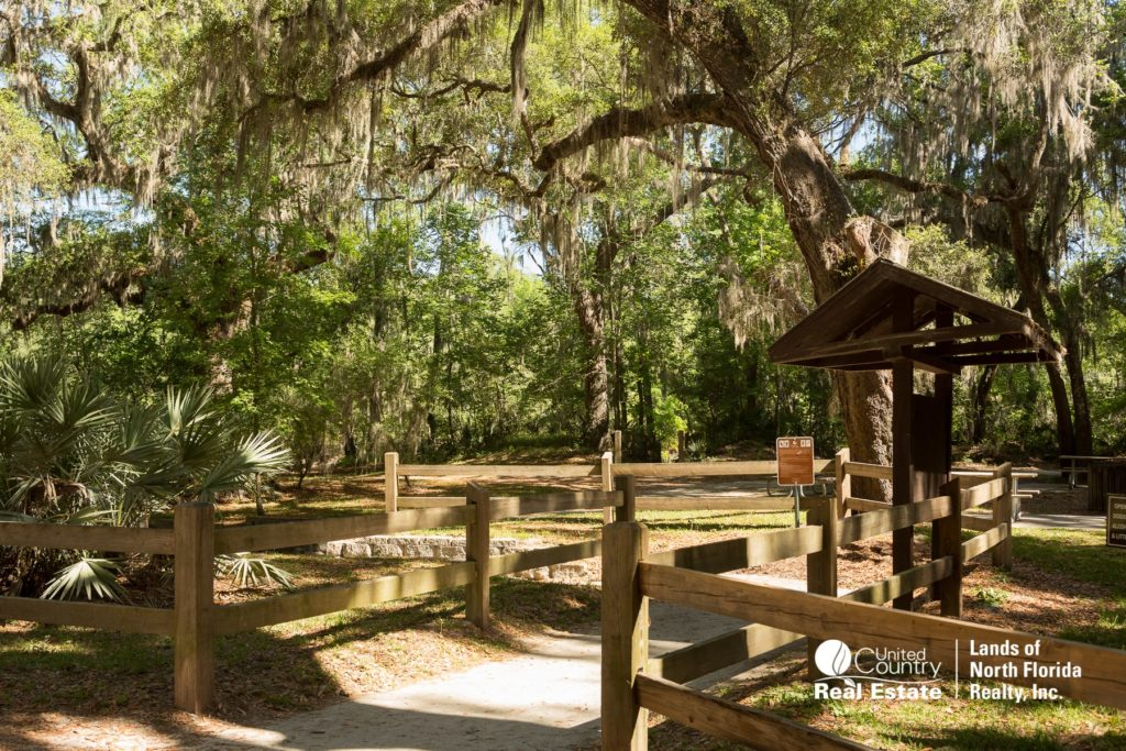 Walkway at Suwannee Springs from Parking lot area