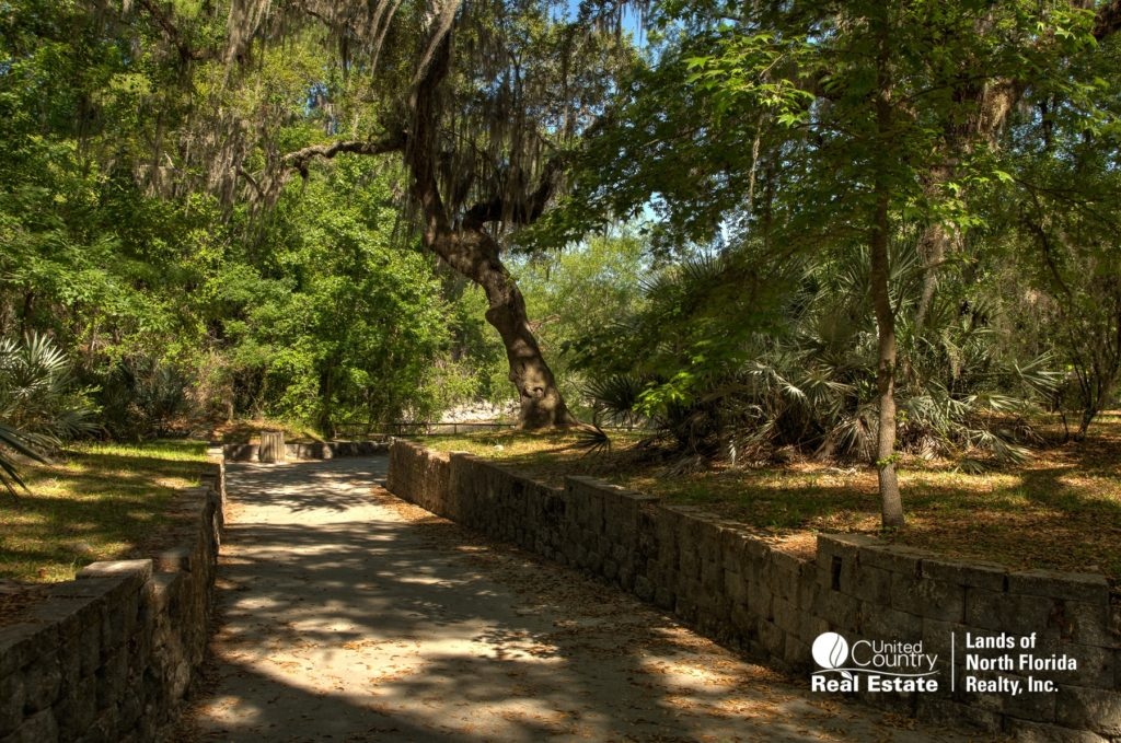 Walkway under big oak trees down to Suwannee Springs