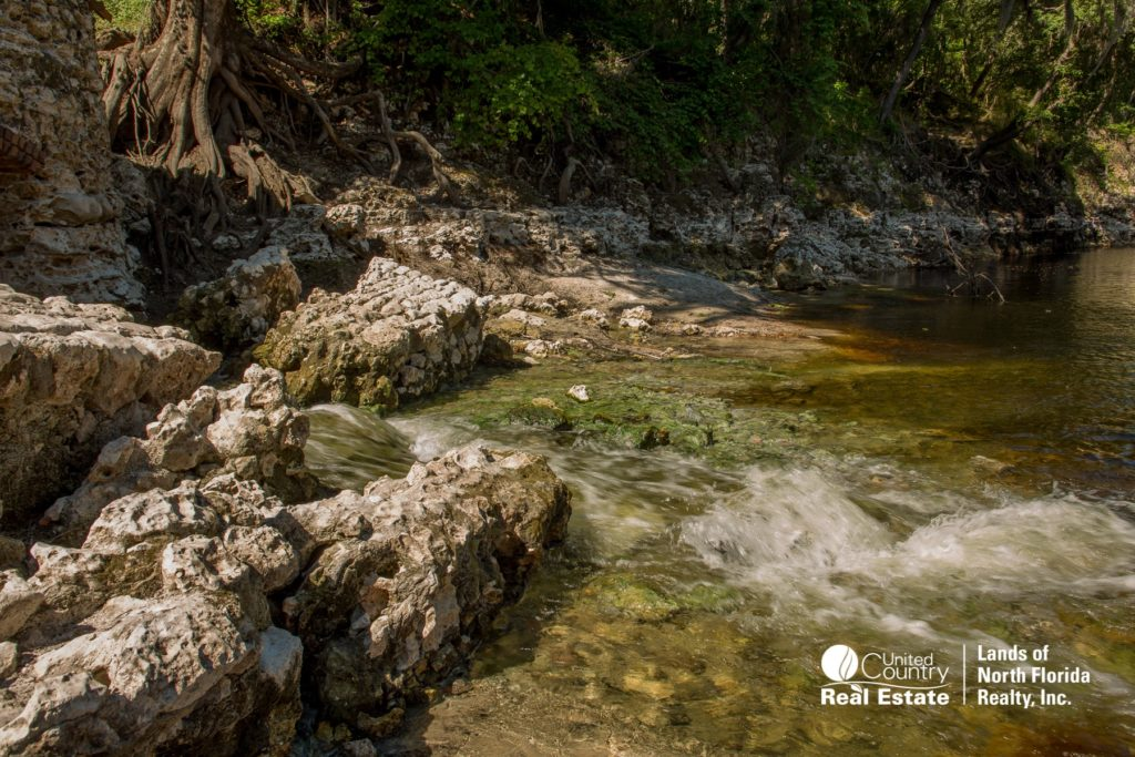 Water flows into the Suwannee River