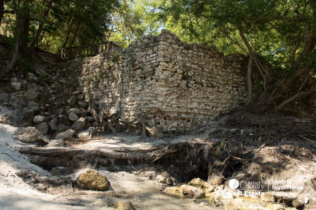 Suwannee Springs - Bath house walll and small spring trickling out