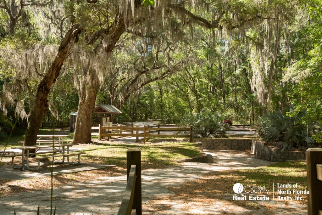 Pathways, picnic tables, large tree canopy.