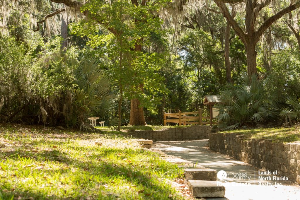 Suwannee Springs side walk and entry area