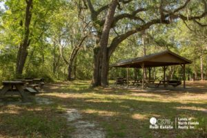 Large oak tree over a pavilion in one of the many picnic areas.