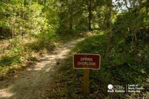 Signage and a trail leading up to the scenic overlook where you get the best view of the entire spring