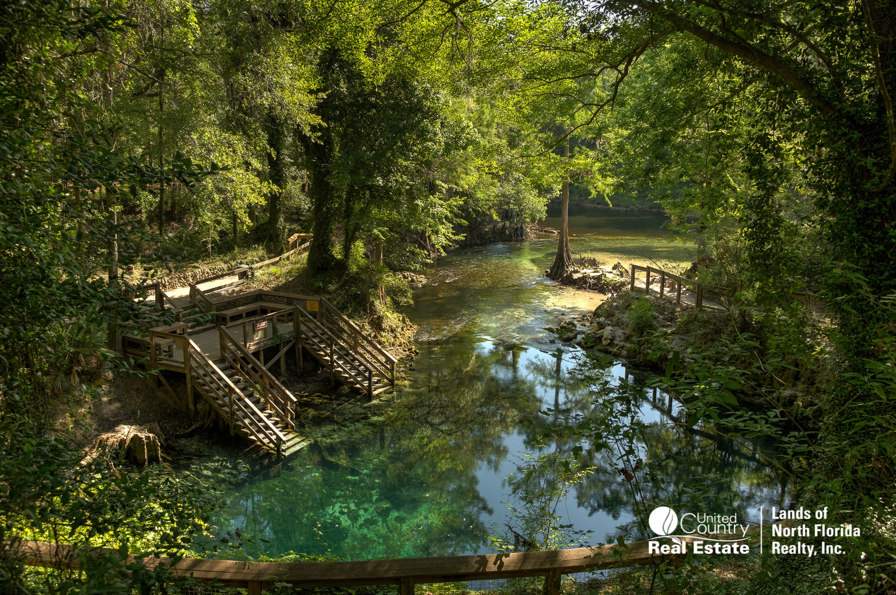 An elevated view looking down towards Madison Blue Springs. Entry steps to the left, and a board walk way to the right. The blue water flows out and merges with the Withlacoochee River.