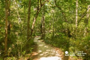 A trail at madison blue spring state park that leads to Martz Sink