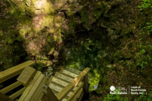 Last few steps, leading into the water of the underground Marts Sink cave, frequented by divers