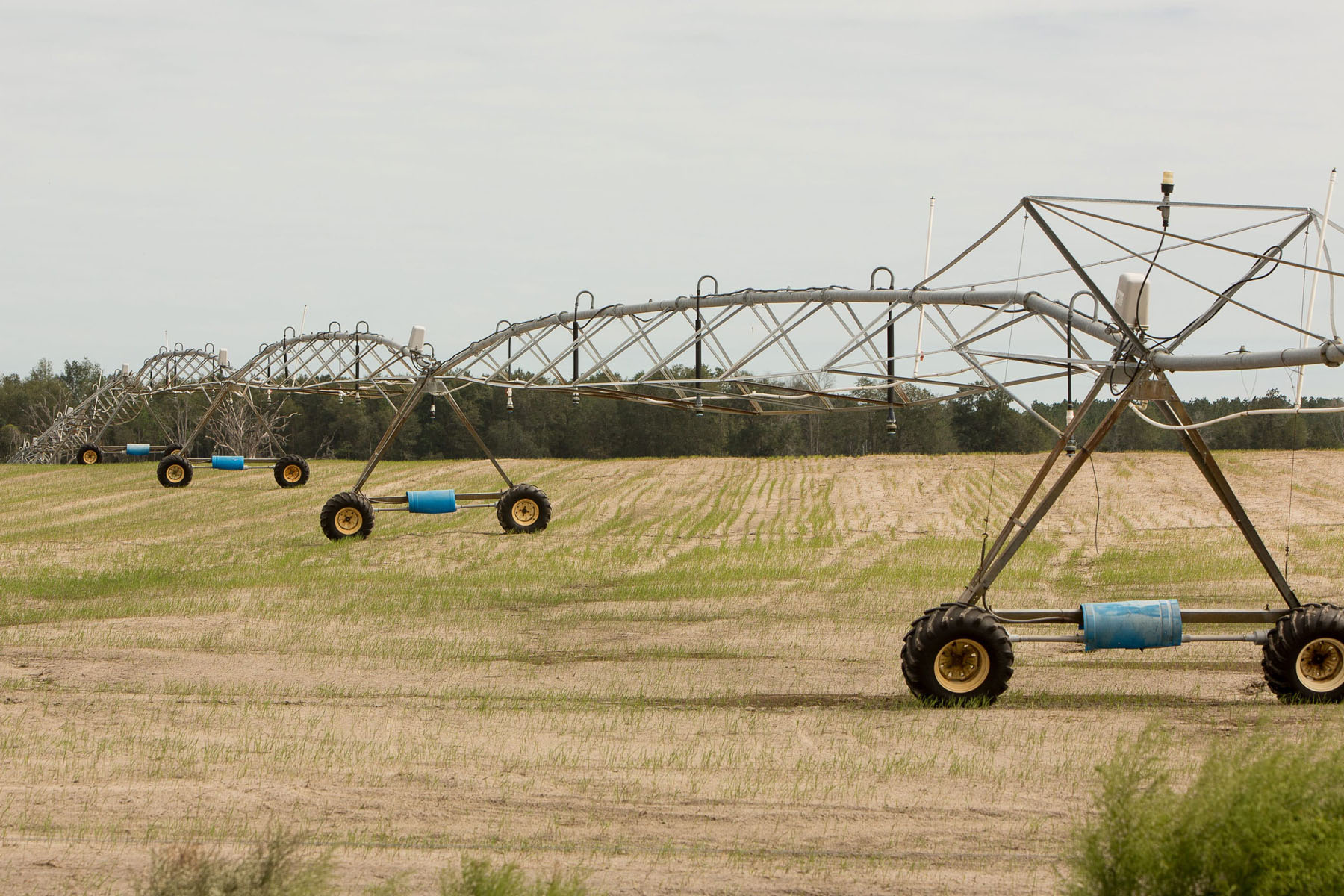 Farm Land for sale in North FL. Center pivot irrigation.