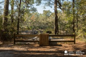 Picnic Table overlooking bank of Suwannee River