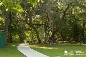Large towering oak trees over the picnic areas with tables and a concrete sidewalk