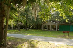 Multiple picnic shelters
