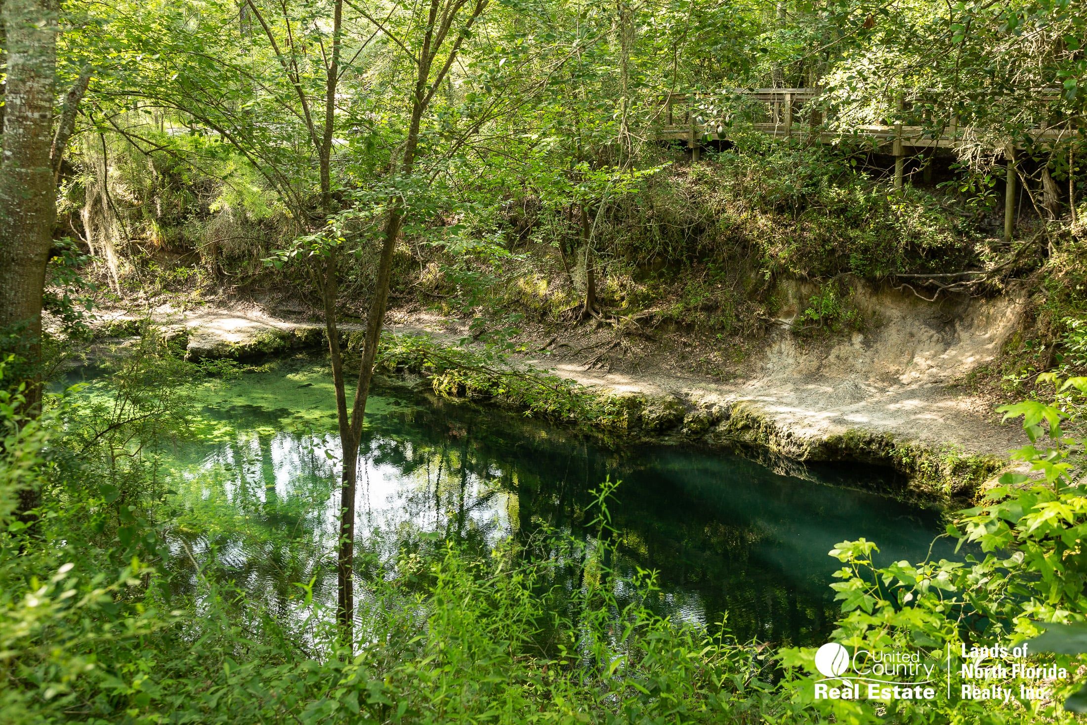 View of Lafayette Blue Spring