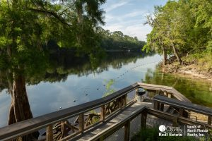 Looking down river from a board walk at the confluence of Lafayette Blue Spring and the Suwannee River
