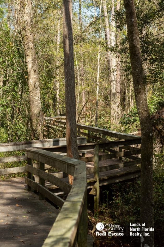 Boardwalk at Falling Creek Falls Park