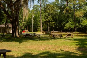 Troy Springs picnic area