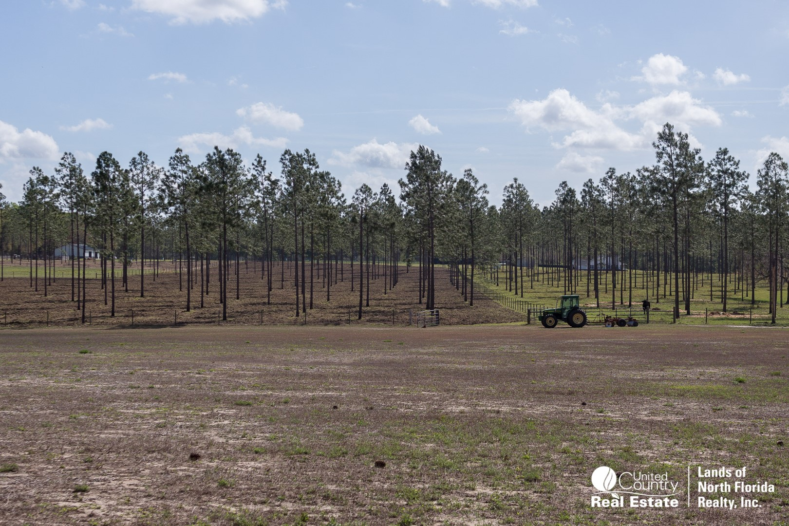 Field with tractor and pine timber plantation in background
